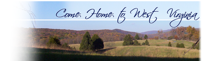 Listings - West Virginia Land & Home Realty